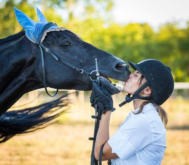 Pferde-OP Versicherung für Deutsches Reitpferd